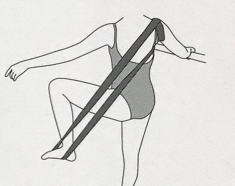 背中のストレッチ